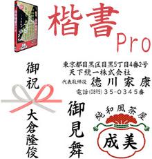 楷書Pro