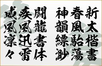 書き比べ 闘龍書体+新太楷書体 2書体セット