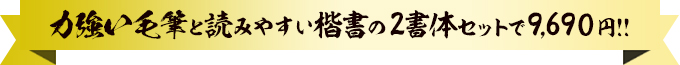 力強い毛筆と読みやすい楷書の2書体セットで9,690円!!