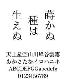 清和堂フォントデザイン室 TAm-清和堂明朝Global Std R