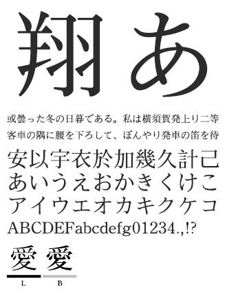 イワタ学参明朝体 イワタ書体ライブラリー