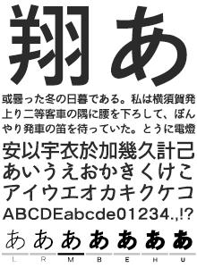 イワタ新ゴシック体 かなC イワタ書体ライブラリー