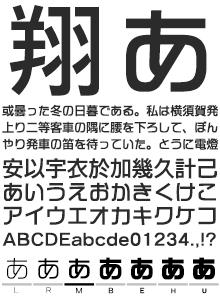 イワタ新ゴシック体 かなE イワタ書体ライブラリー