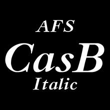組み込みOK fontUcom ゲームで使える87書体セット AFSCasBItalic