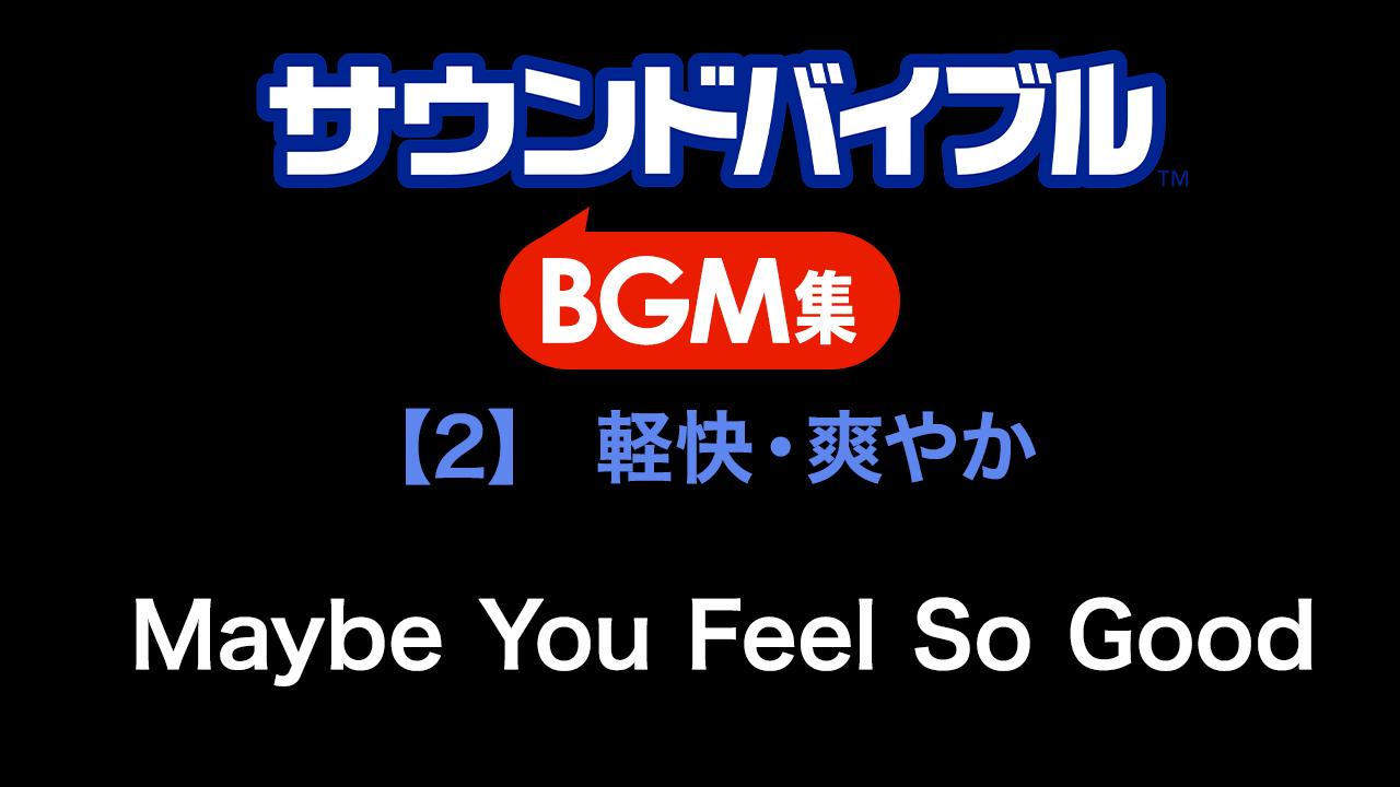 ロイヤリティフリー デジタル音素材集 サウンドバイブルBGM集 【2】[軽快・爽やか]